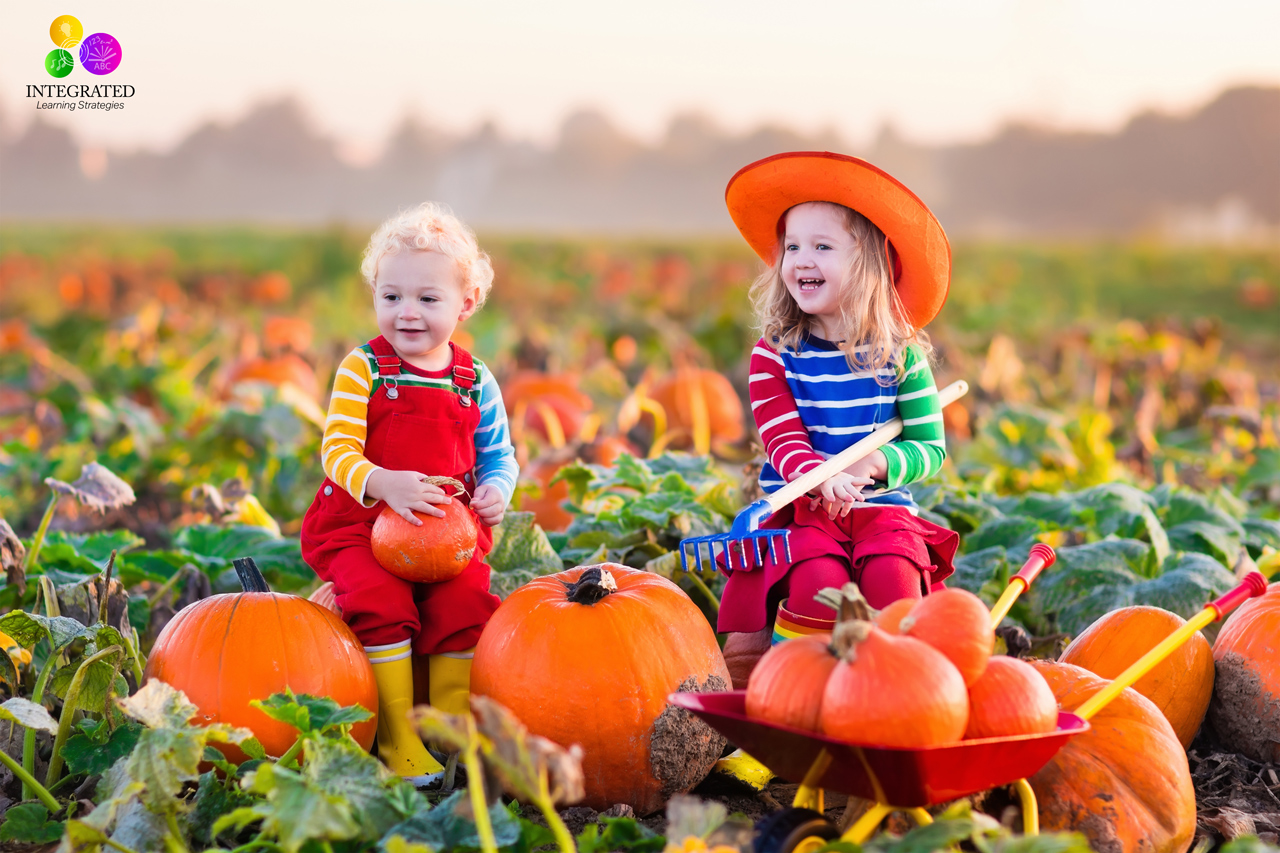 pumpkin patch a strategic management plan Mgmt3347- strategic managment | pumpkin patch | case study analysis | | external analysis pumpkin patch what industry is it pumpkin patch (pp) is one the largest specialty company in fashionable children's wear industry in australia.