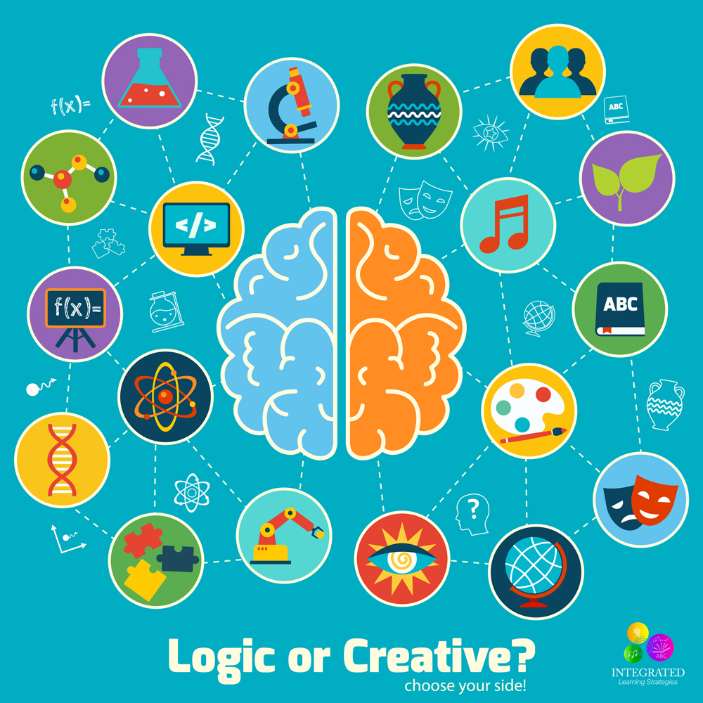 significance of the brain hemisphere and What is brain meaning of brain which is located within the cranial vault and divided into the right and left hemispheres the brain functions as a.