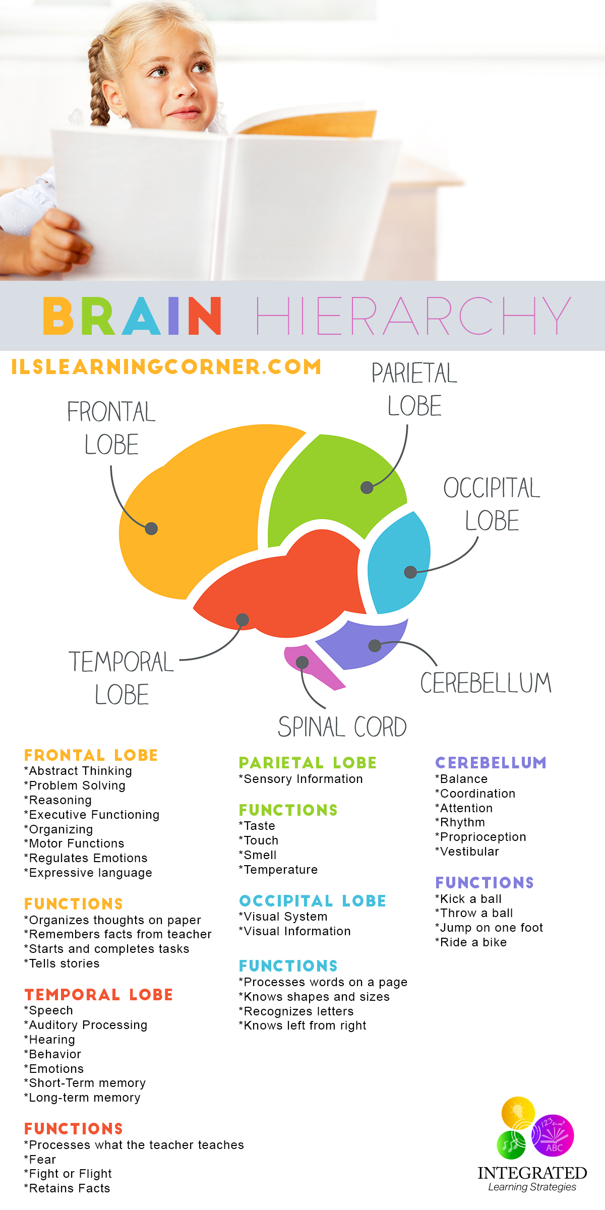 benefiting students through a brain based learning The benefits that isns offer student learning and the classroom environment benefits isn provide for teachers and students isn as a form of brain-based.