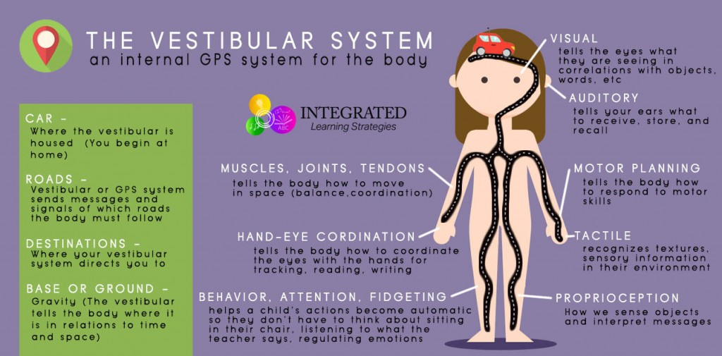 Vestibular System: Your Child's Internal GPS System for Motor Planning and Attention | ilslearningcorner.com
