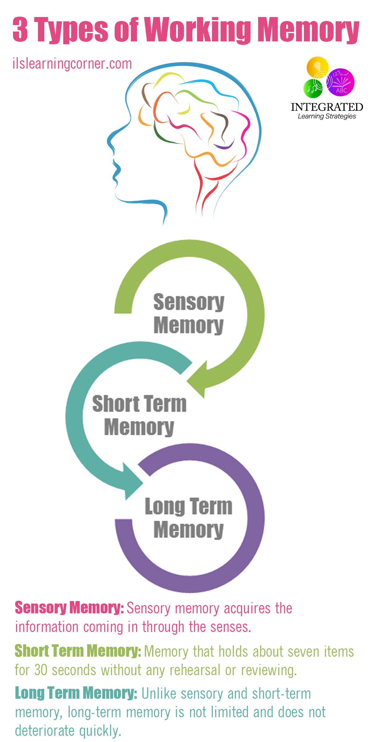 What Is Working Memory >> Types Of Memory Working Memory Tied To Your Child S