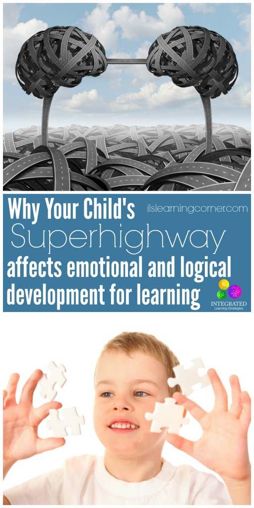 Corpus Callosum: Your Child's Superhighway for Connecting the Emotional and Logical Sides of the Brain for Better Learning | ilslearningcorner.com