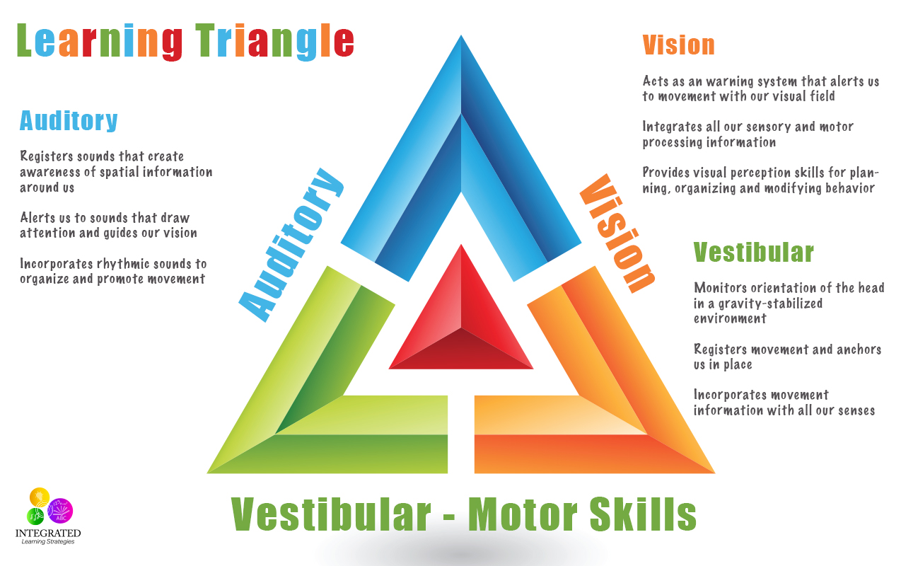 Learning Triangle: Without the Vestibular, Visual and Auditory Working Together, Learning Fails