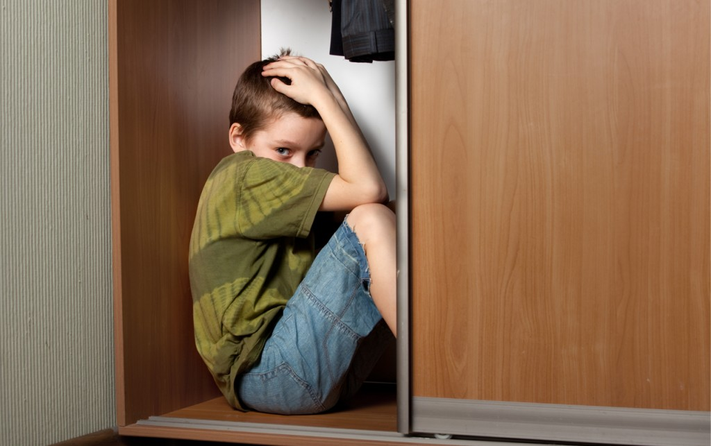 "Fear Paralysis Reflex: Why my Child Experiences ""Deer in the Headlights,"" Fear, Anxiety, Night Terrors and Phobias 