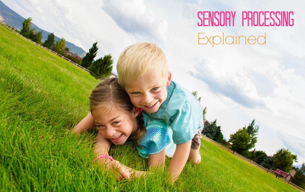 What the Experts can Help You Understand about a Sensory Processing Disorder