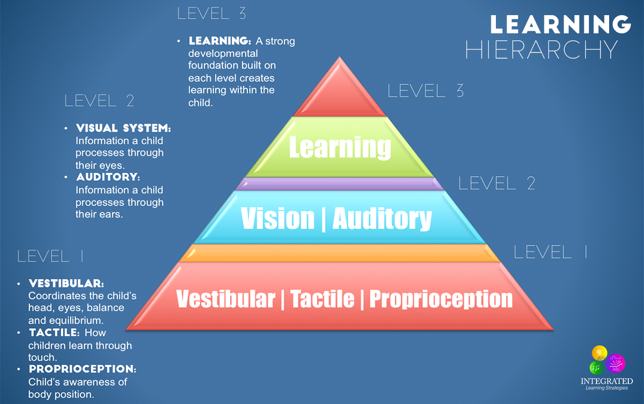 Sensory Systems that Make up the Learning Hierarchy of a Strong Academic Foundation