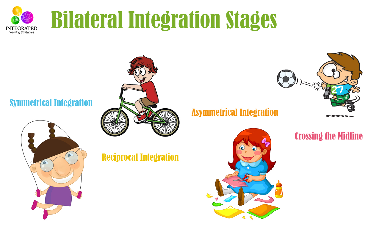Bilateral Integration: Stages of Bilateral Integration for Reading, Tracking, Writing and Crossing the Midline