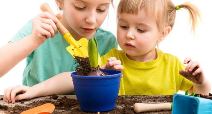 Sensory Garden: Why Gardening Helps Emotional Grounding and Sensory Integration | ilslearningcorner.com