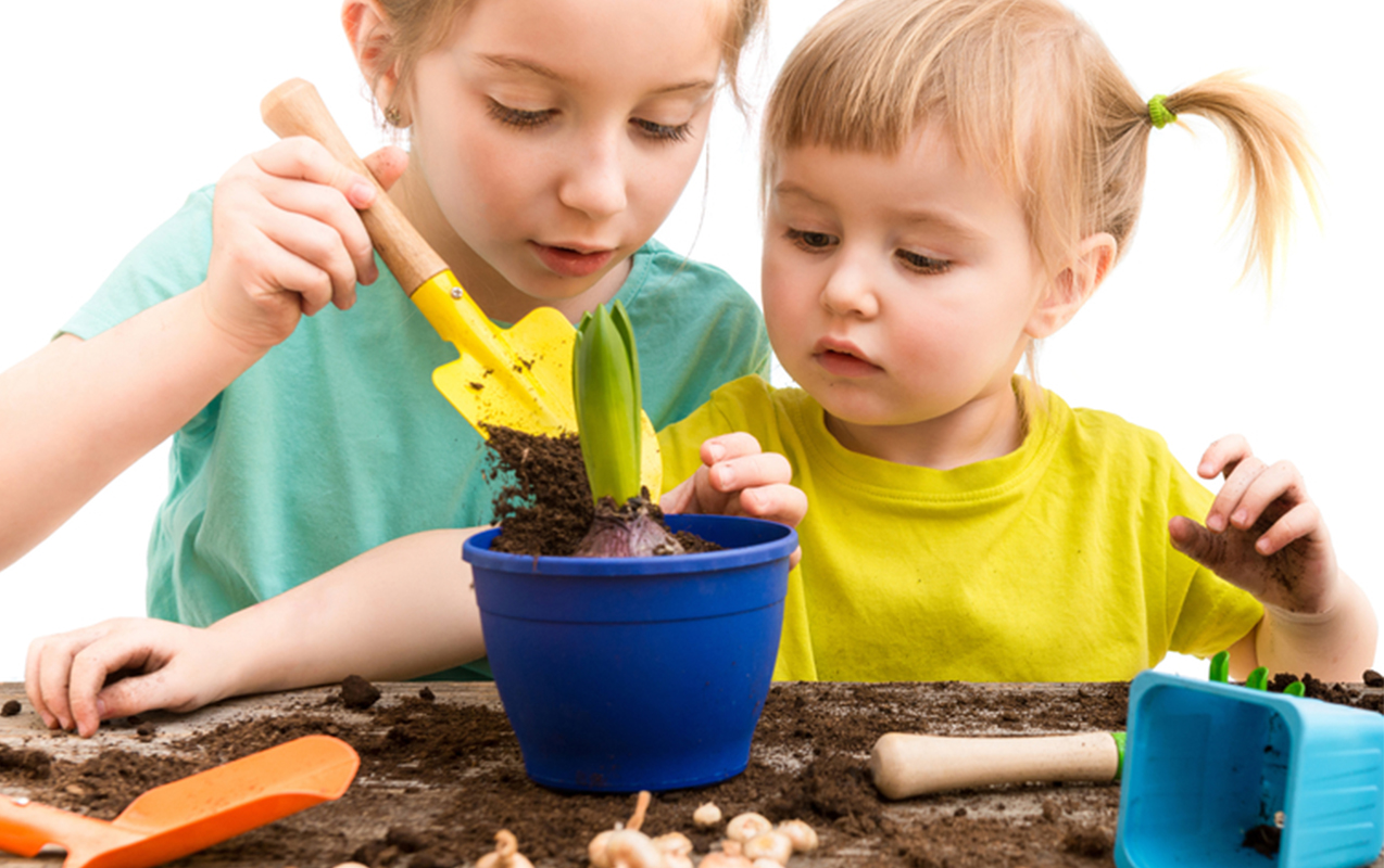 Sensory Garden: Why Gardening Helps Emotional Grounding and Sensory Integration