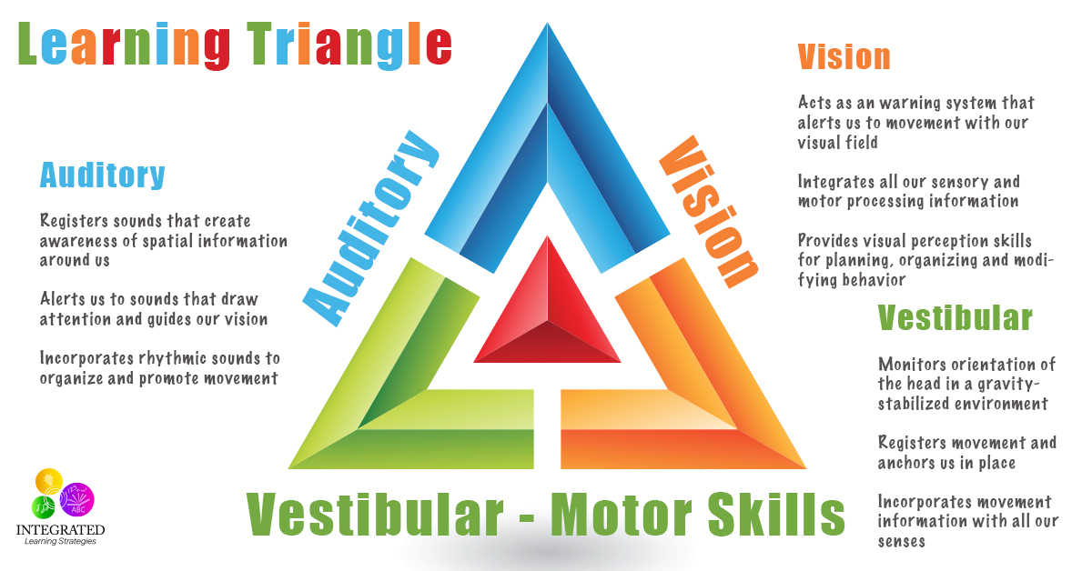 Learning triangle without the vestibular visual and for Visual motor processing disorder