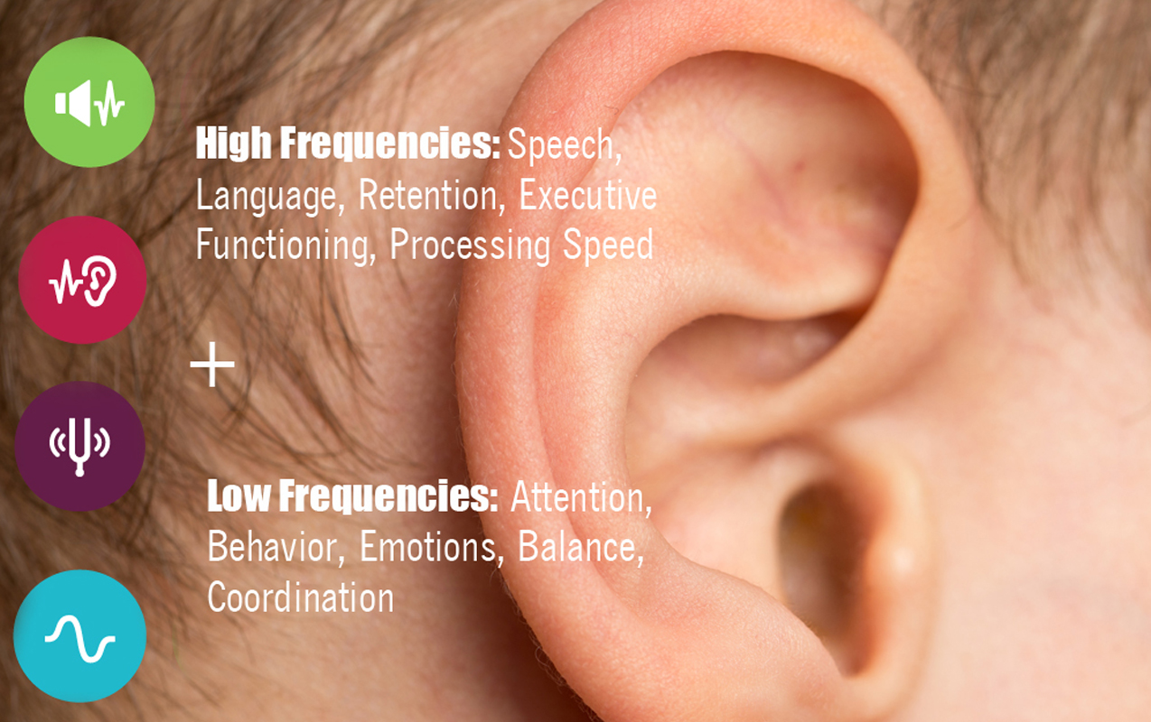 AUDITORY FREQUENCIES: Why High and Low Frequencies Affect Behavior, Emotions, Speech and Language