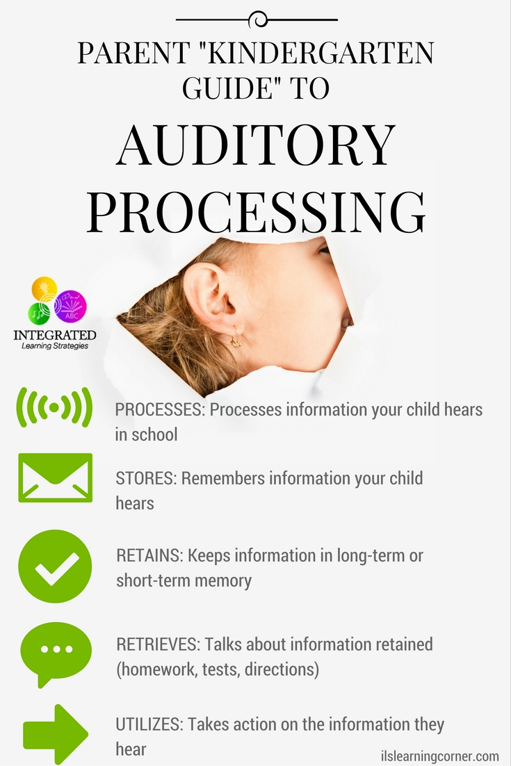 "Auditory System: ""Kindergarten Guide"" to Auditory Processing and How Your Child Uses it in the Classroom 